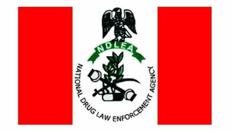 COVID-19: FG Suspends Screening Of 5,000 Successful Candidates For NDLEA Job