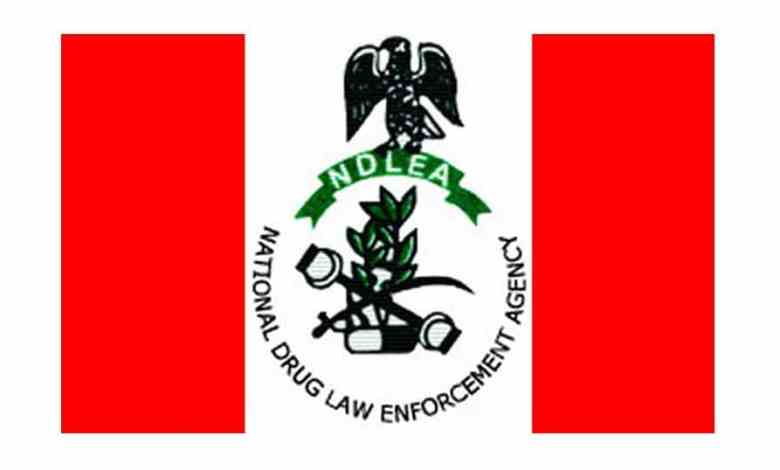 NDLEA Releases Final List of Successful Candidates Shortlisted For Training