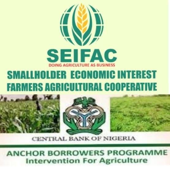 FG Approves New Documentation Date For SEIFAC Loan