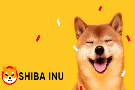 Shiba Inu Joins Top 20 Crypto List As It Continues To Pump